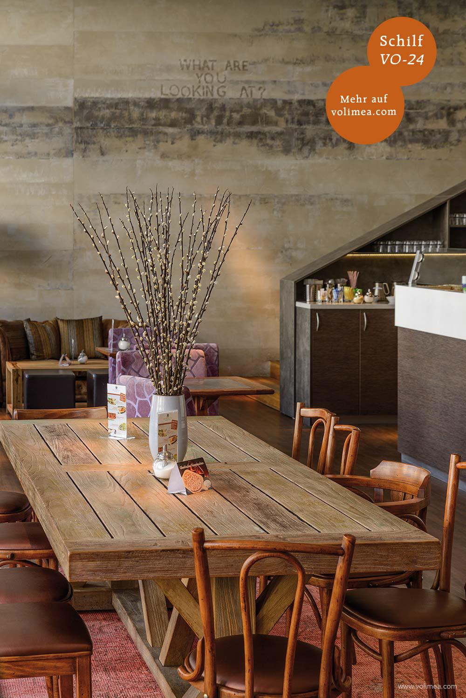 Volimea Wandbeschichtung in einem Cafe Schilf-VO-24